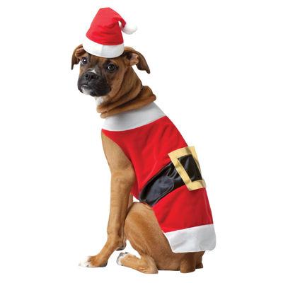 Buyseasons Santa Pet Costume