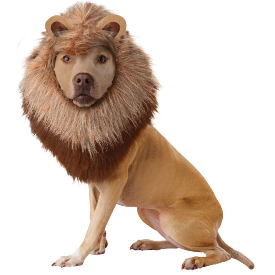 Buyseasons Lion Pet Costume