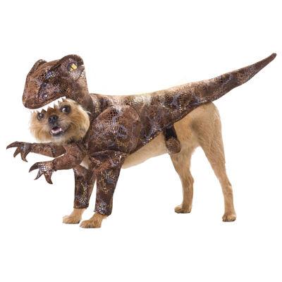 Buyseasons Raptor Pet Costume