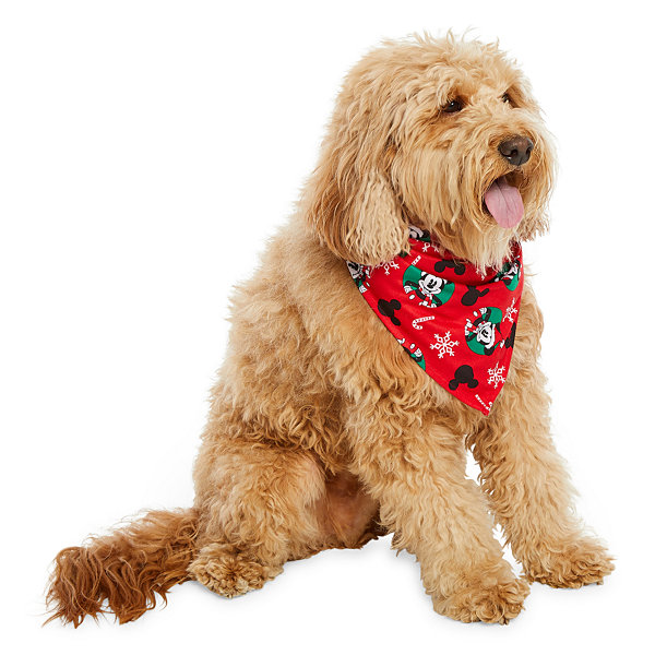 Disney Mickey Family Pet Bandana -Pet