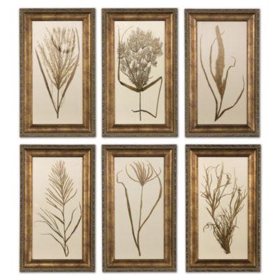 Set of 6 Wheatgrass Wall Art