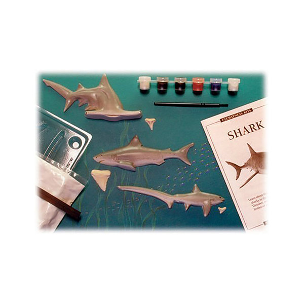 Eyewitness Kit- Shark Painting Kit