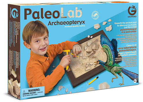 Geoworld Discovery Toy
