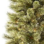 North Pole Trading Co. 7 Foot Branford Slim Cashmere Pine Pre-Lit Christmas Tree