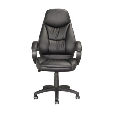 Executive Workspace Chair