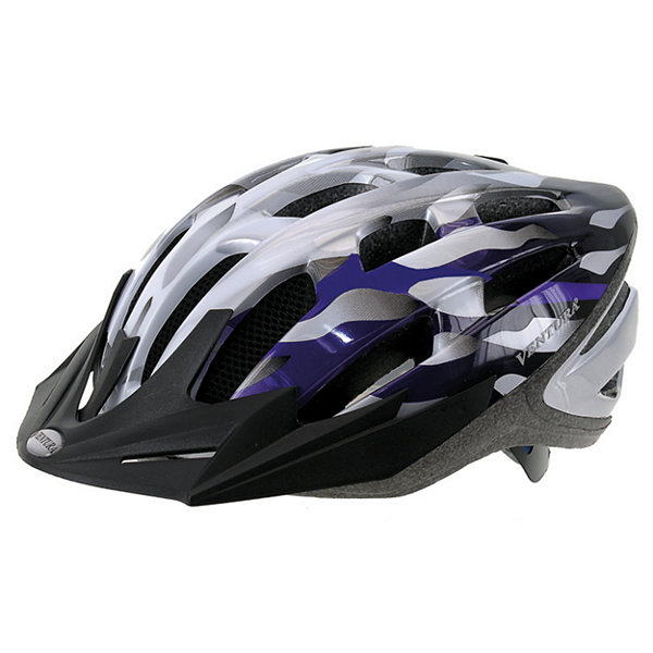 Ventura Silver/Blue In-Mold Helmet