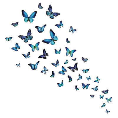 Brewster Wall Mariposa Butterfly Wall Decal