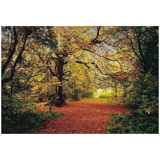 Brewster Wall Autumn Forest Wall Mural Wall Decal