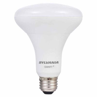Smart White Flood Light