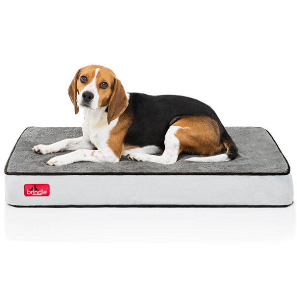 "Brindle 4"" Large Memory Foam Pet Bed """