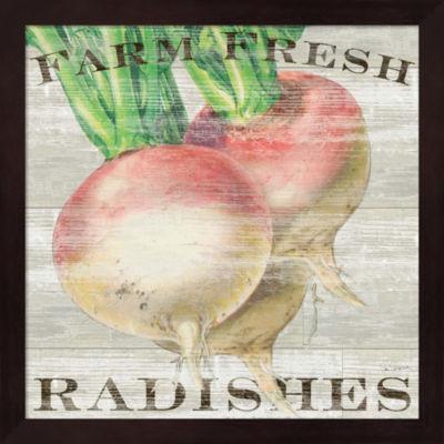 Farm Fresh Radishes Framed Wall Art