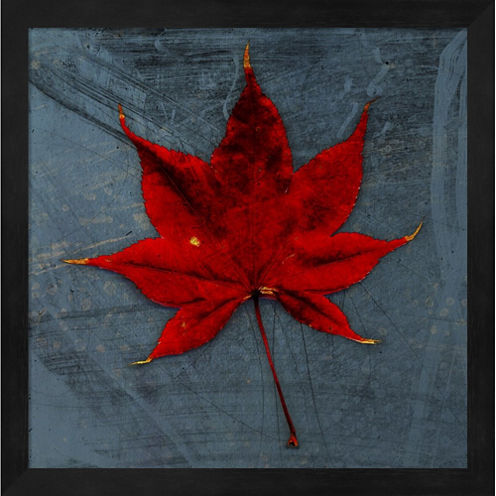Japanese Maple Framed Wall Art