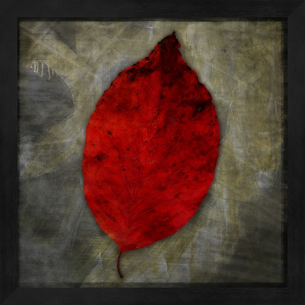 Red Dogwood Framed Wall Art
