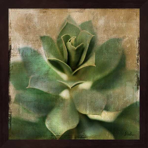 Metaverse Art Succulent I Framed Wall Art
