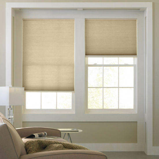 JCPenney Home™ Light-Filtering Cordless Cellular Shade