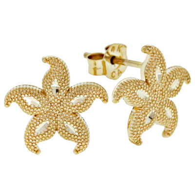 14K Gold Star Fish Stud Earrings