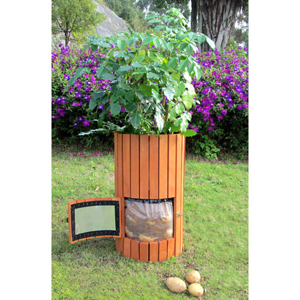 Northbeam Wooden Potato Outdoor Planter