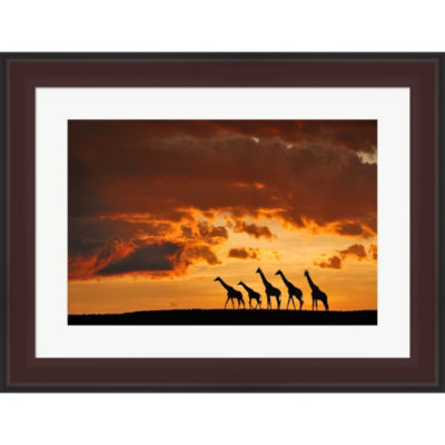 Five Giraffes Framed Print Wall Art