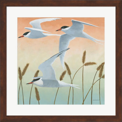 Free As A Bird II Framed Print Wall Art