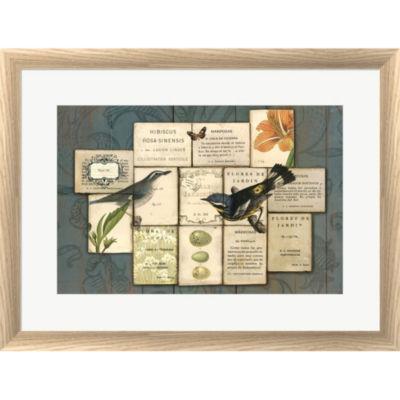 Birds Of The Garden Framed Print Wall Art