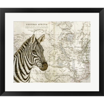 Burchell's Zebra Framed Print Wall Art