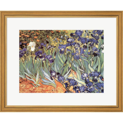 Irises In The Garden Saint-Remy C.1889 Framed Print Wall Art
