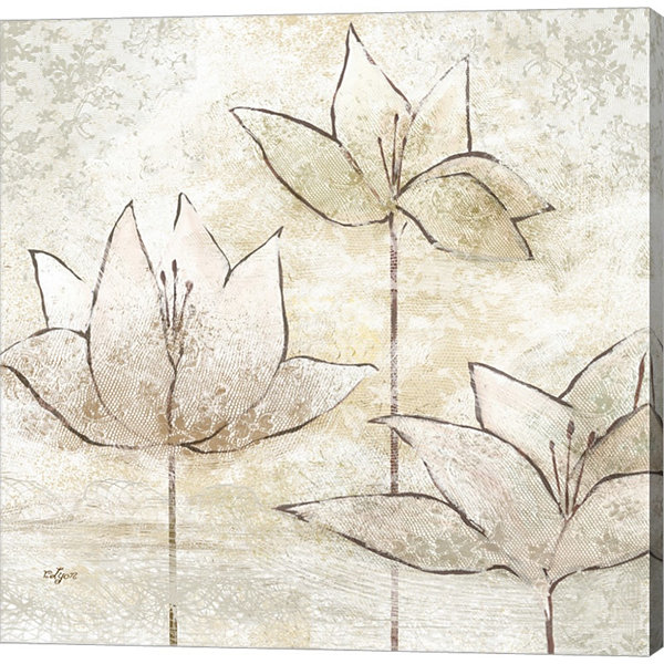 Floral Sketch II by Rebecca Lyon Gallery Wrapped Canvas Wall Art On Deep Stretch Bars