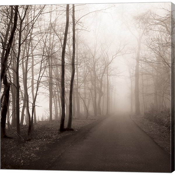 Foggy Path Gallery Wrapped Canvas Wall Art On DeepStretch Bars