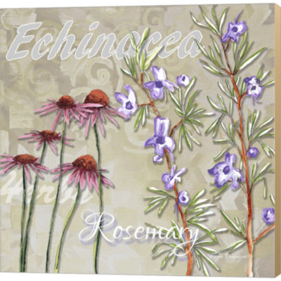 Metaverse Art Herbs 2 Gallery Wrapped Canvas WallArt