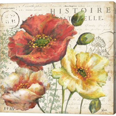 Metaverse Art Spice Poppies Histoire Naturelle I Gallery Wrapped Canvas Wall Art