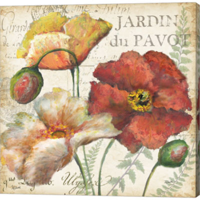 Metaverse Art Spice Poppies Histoire Naturelle IIGallery Wrapped Canvas Wall Art