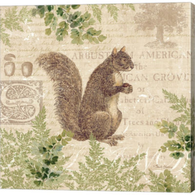 Woodland Trail III Squirrel Gallery Wrapped CanvasWall Art On Deep Stretch Bars