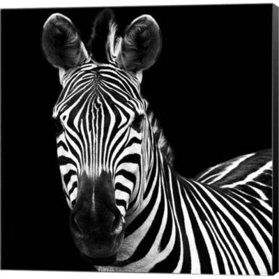 Metaverse Art Zebra II Square Gallery Wrapped Canvas Wall Art
