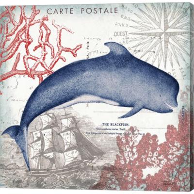Coastal Sea Life Vi Gallery Wrapped Canvas Wall Art On Deep Stretch Bars