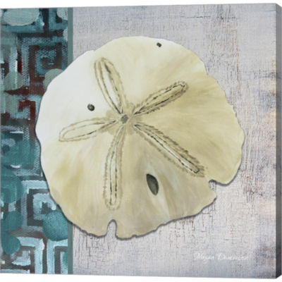 Metaverse Art Sand Dollar 1 Back Gallery Wrapped Canvas Wall Art