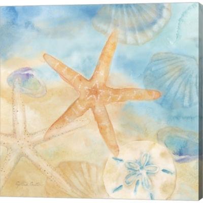 Metaverse Art Watercolor Shells IV Gallery WrappedCanvas Wall Art