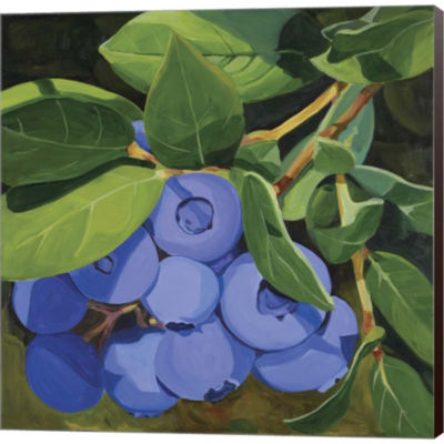 Blueberries Gallery Wrapped Canvas Wall Art On Deep Stretch Bars