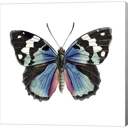 Butterfly Botanical II Gallery Wrapped Canvas WallArt On Deep Stretch Bars