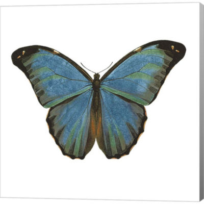 Metaverse Art Butterfly Botanical III Gallery Wrapped Canvas Wall Art