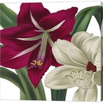 Christmas Amaryllis I Gallery Wrapped Canvas WallArt On Deep Stretch Bars