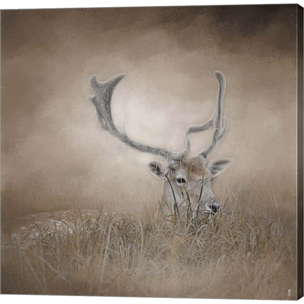 In Plain Sight Sika Deer Gallery Wrapped Canvas Wall Art On Deep Stretch Bars