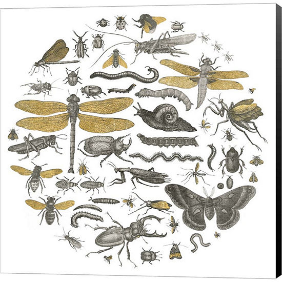 Metaverse Art Insect Circle I Gallery Wrapped Canvas Wall Art