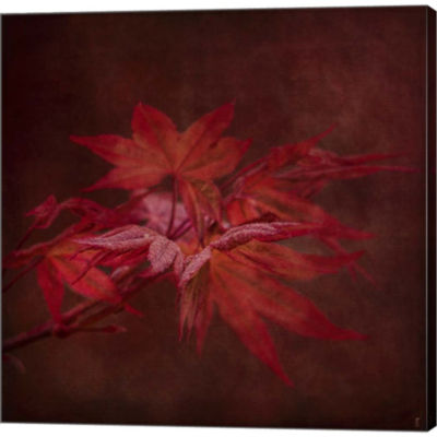 Metaverse Art Japanese Maple Gallery Wrapped Canvas Wall Art
