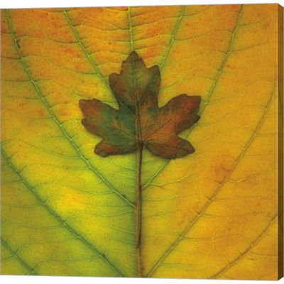 Metaverse Art Leaf Inset Gallery Wrapped Canvas Wall Art