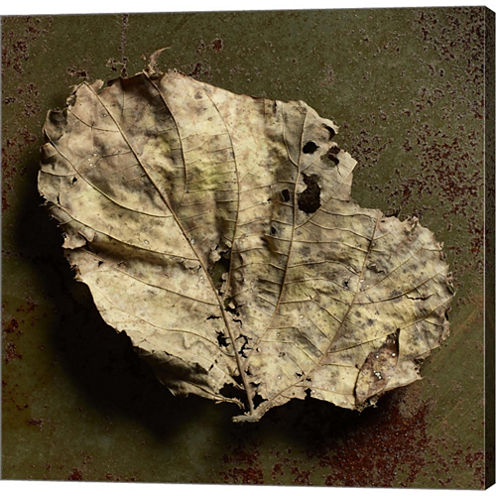 Leaf Torn Gallery Wrapped Canvas Wall Art On DeepStretch Bars