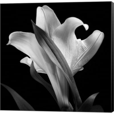 Metaverse Art Lily Gallery Wrapped Canvas Wall Art