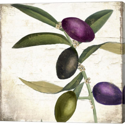 Olive Branch II Gallery Wrapped Canvas Wall Art OnDeep Stretch Bars