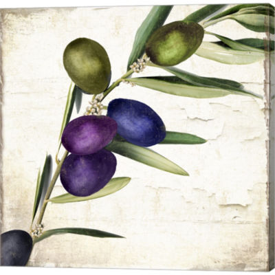 Olive Branch III Gallery Wrapped Canvas Wall Art On Deep Stretch Bars