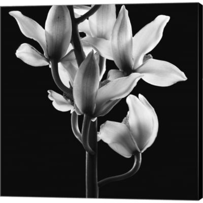 Metaverse Art Orchids 3 Gallery Wrapped Canvas Wall Art