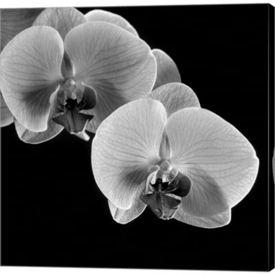 Metaverse Art Orchids Gallery Wrapped Canvas WallArt